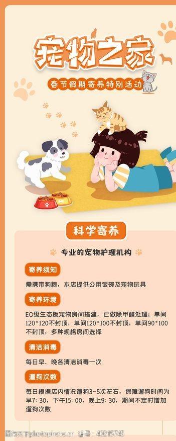 宠物狗宠物之家图片
