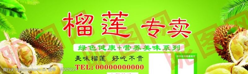 绿底榴莲专卖图片