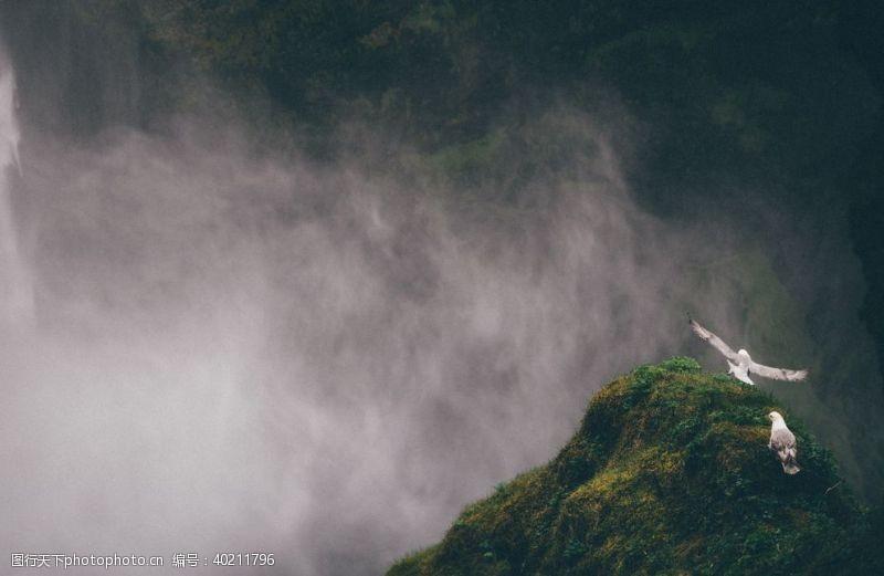 模糊雾图片