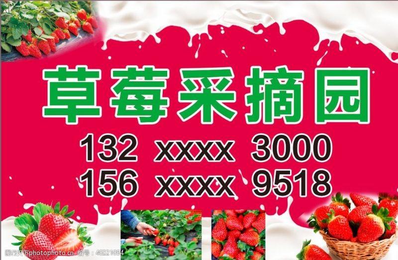 水果宣传草莓采摘园图片