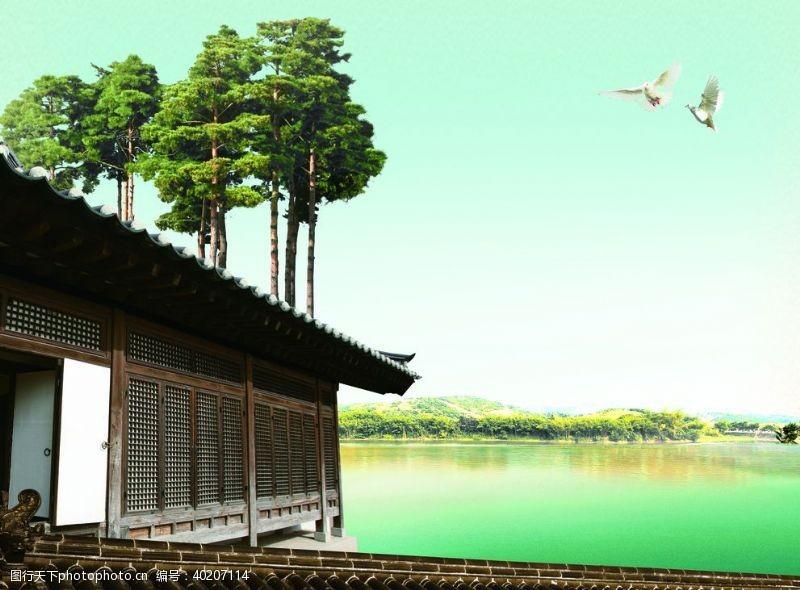 古代建筑白鸽背景图片