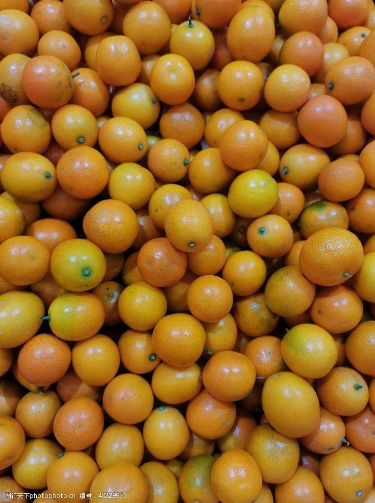 橘子金桔图片
