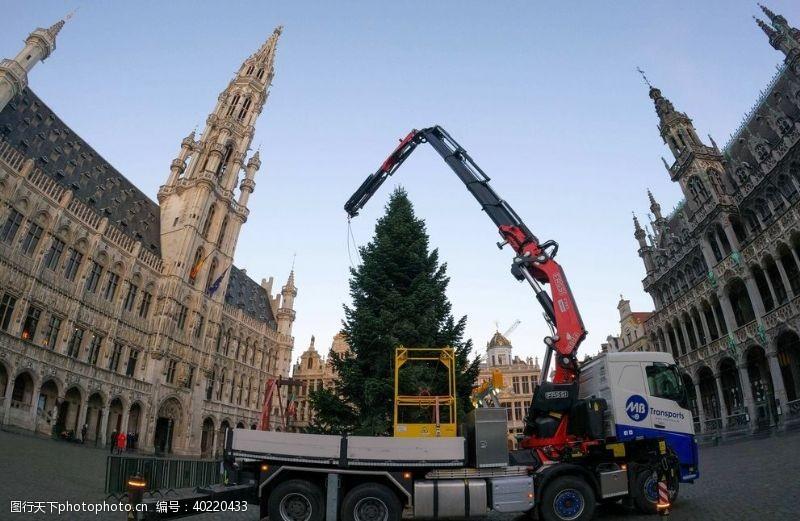 国外旅游圣诞树图片