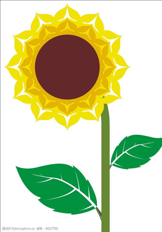 太阳花向日葵矢量图片