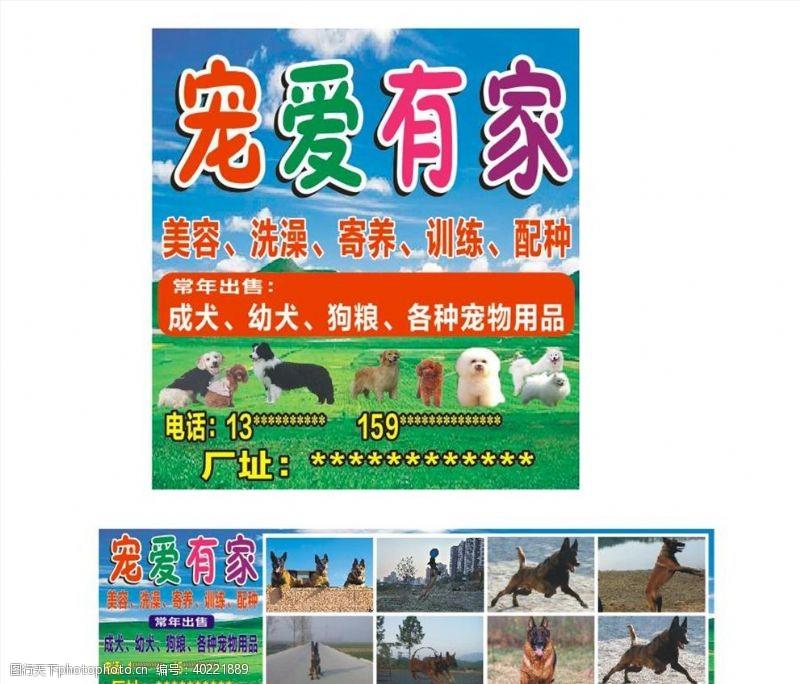 宠物用品宠物店海报图片