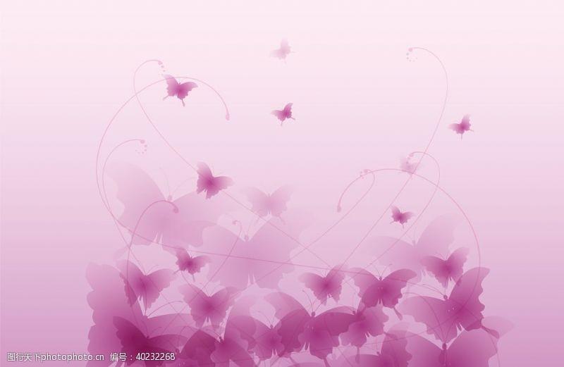 矢量动物蝴蝶动物图片