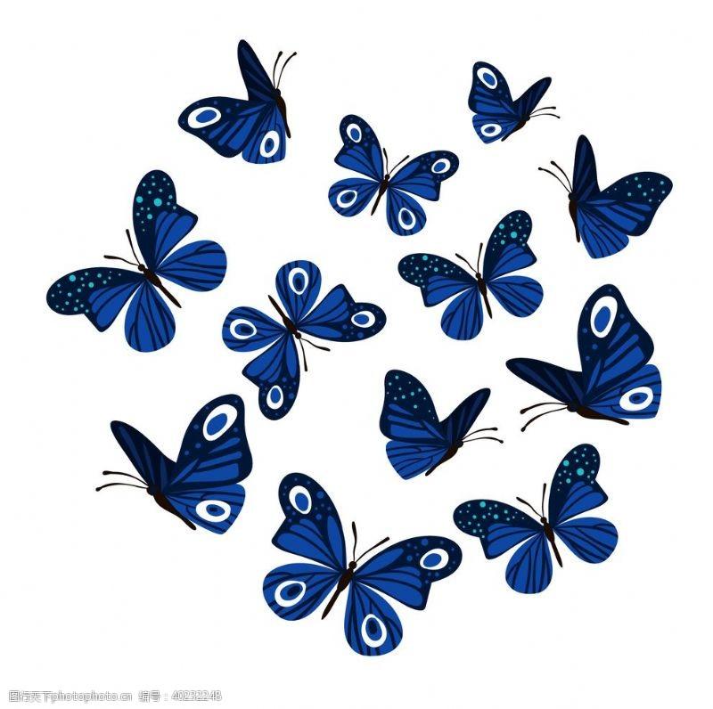 矢量动物蝴蝶昆虫动物图片
