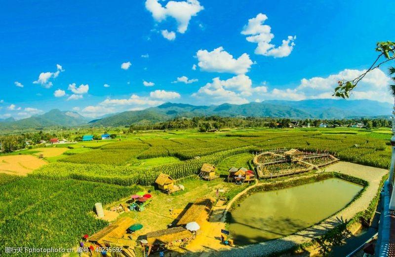 土地农业的农业亚洲图片
