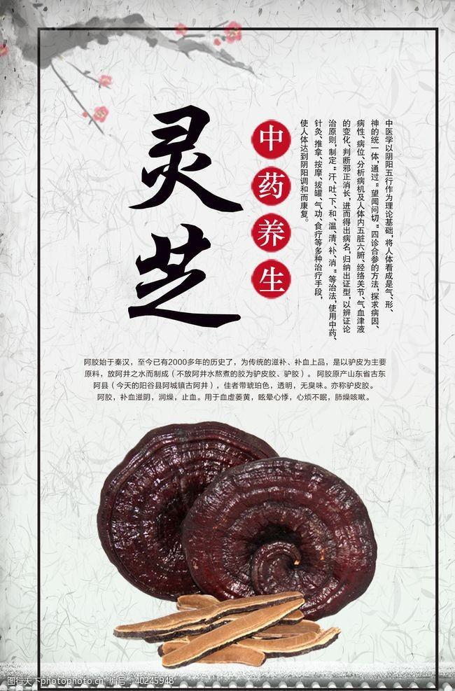 红枣中医补品养生药材内容挂画图片