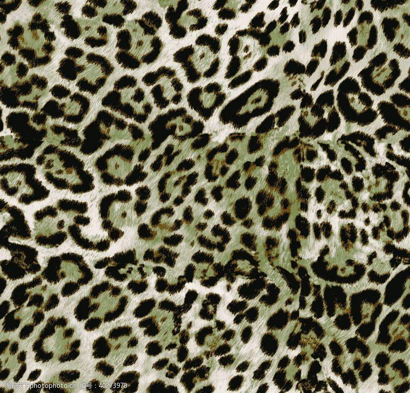 迷彩豹纹图片