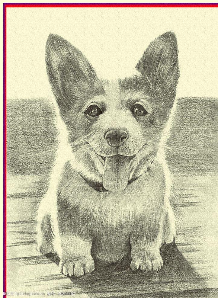 手绘花朵狗狗图片