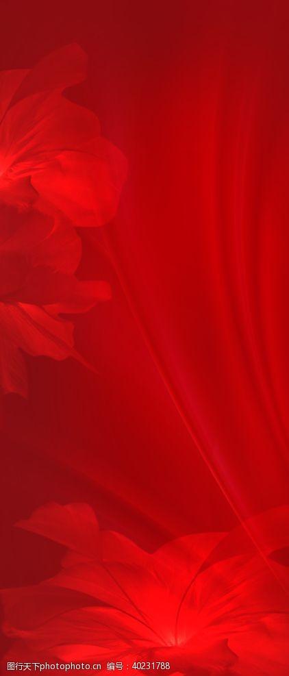 红色花朵背景图片