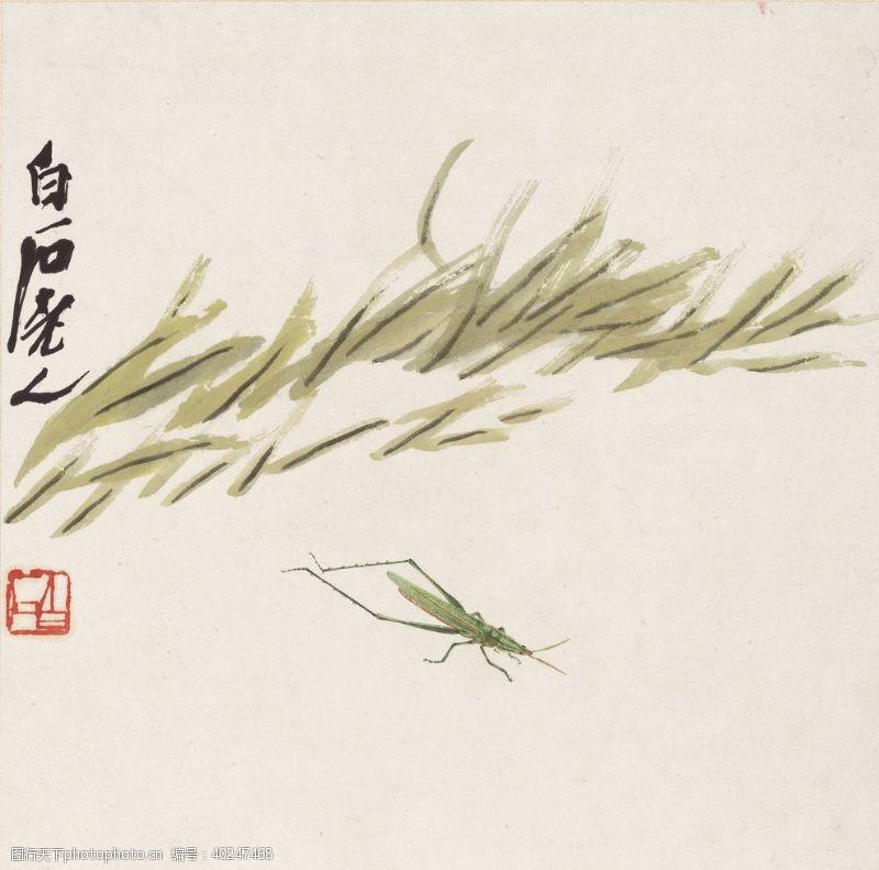 齐白石国画小草箭头蝗图图片