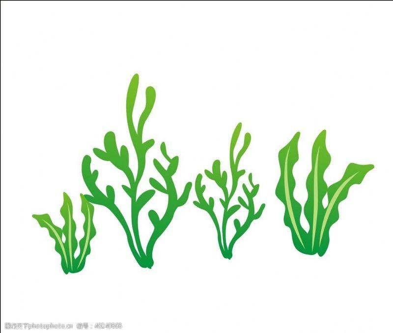 微生物矢量水草图片