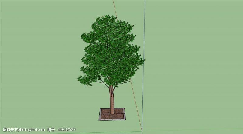 欧式风格树SU模型图片