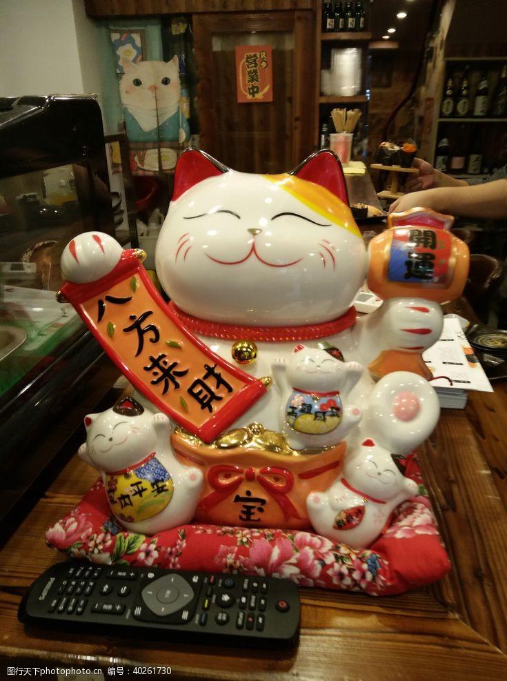 瓷器宠物猫图片