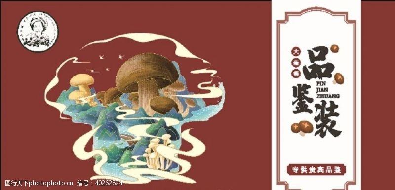 菌类菇菌图片
