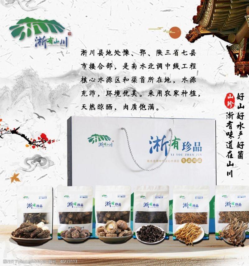 菌类海报橱窗海报宣传海报图片