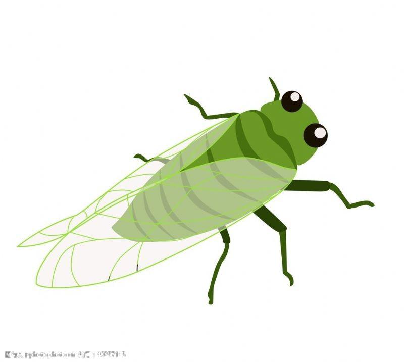 蜗牛卡通夏日知了蝉手绘插画图片