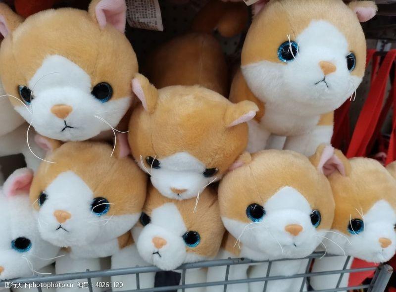娱乐休闲猫咪娃娃图片