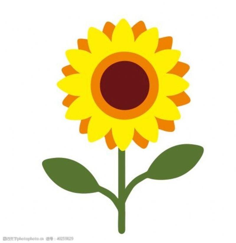 矢量花朵矢量卡通向日葵图片
