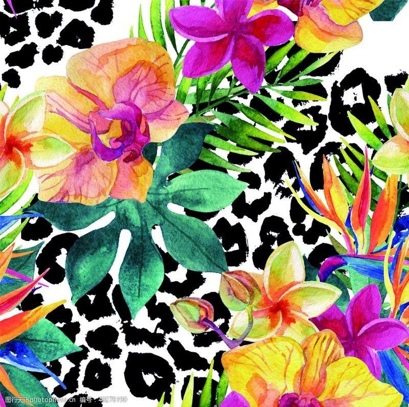 彩花手绘花图片