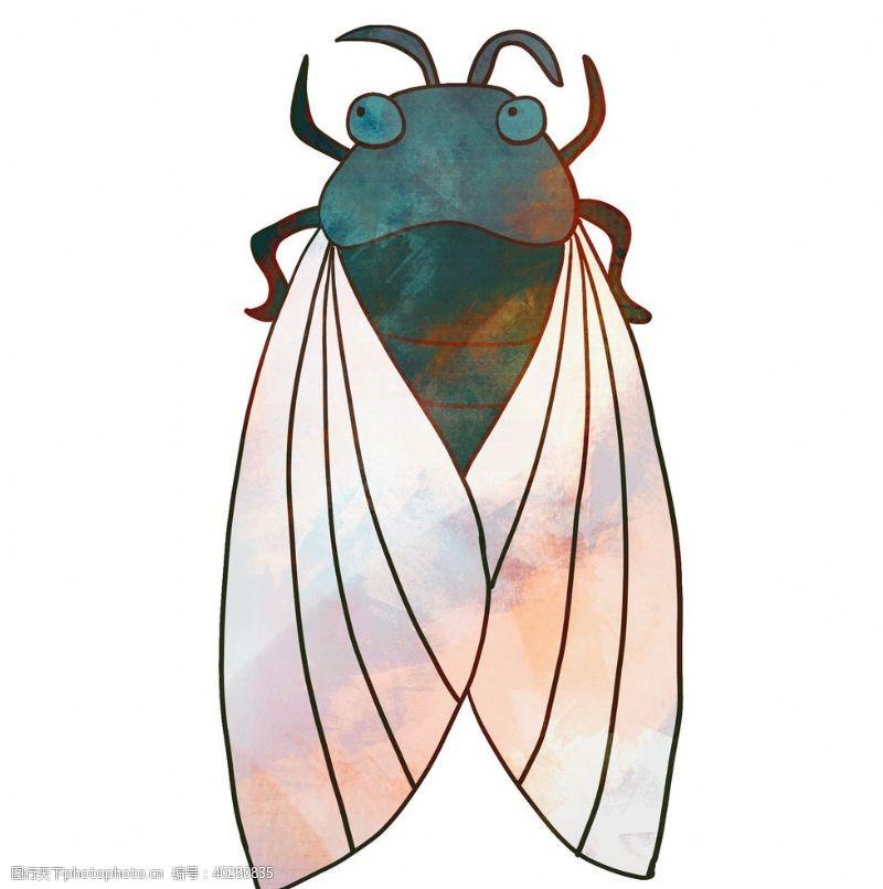 蝴蝶手绘卡通知了蝉昆虫动物插画图片