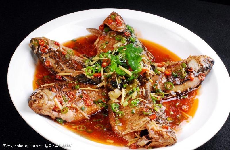 仔姜煮鲫鱼图片