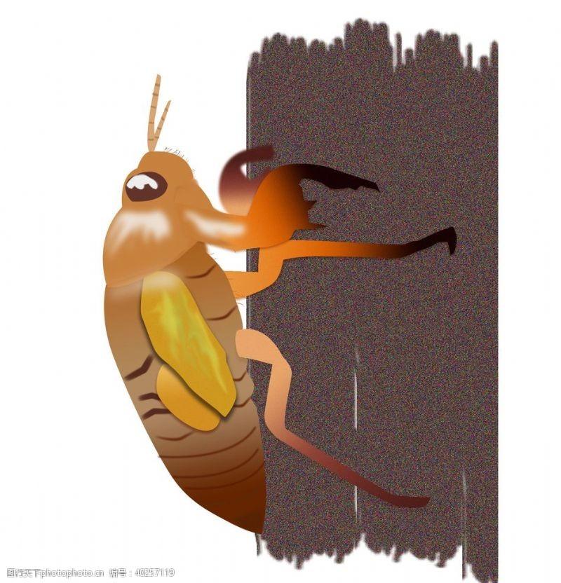 蜗牛卡通知了手绘图片