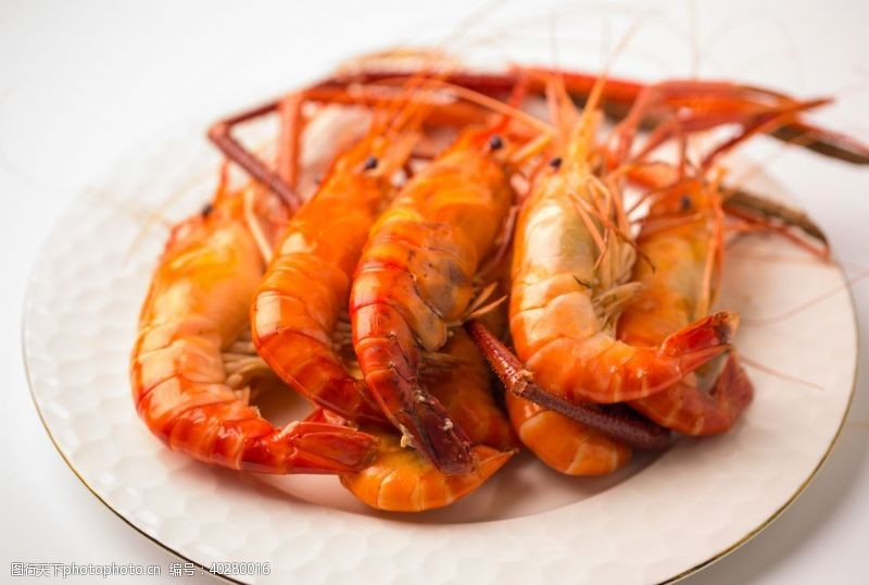 c罗罗氏虾图片