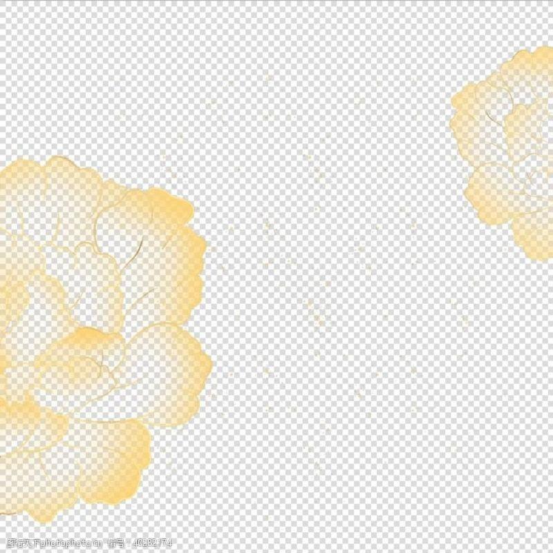 牡丹花牡丹图片