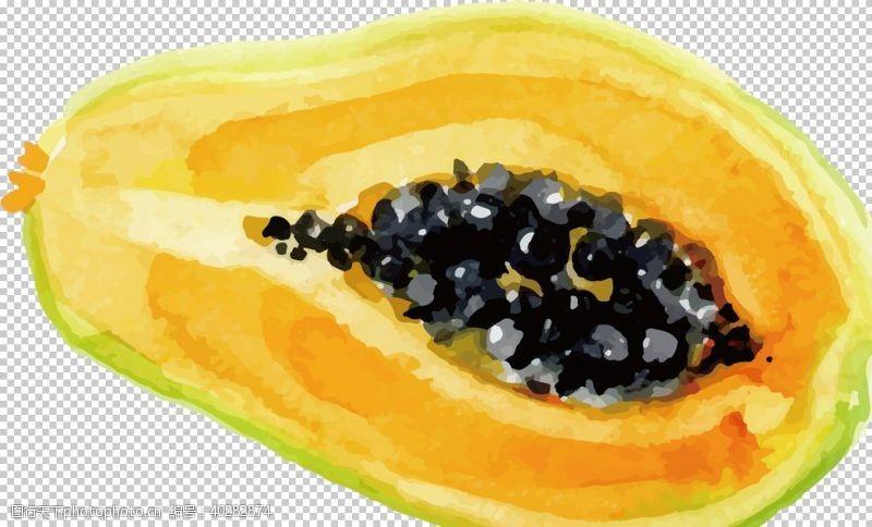 手木瓜图片