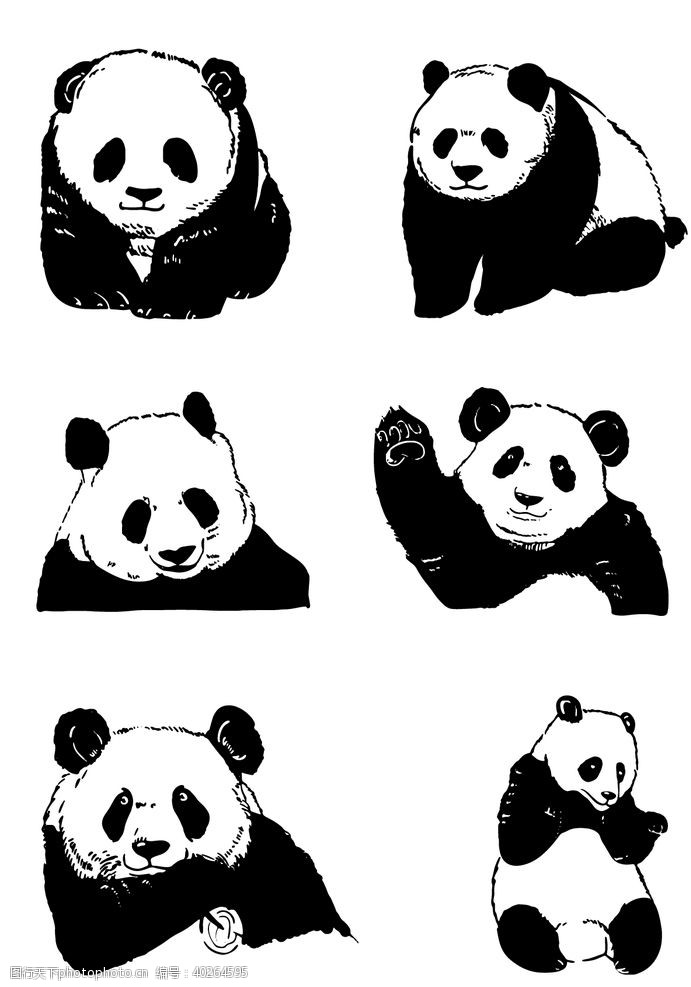 手绘国宝熊猫图片