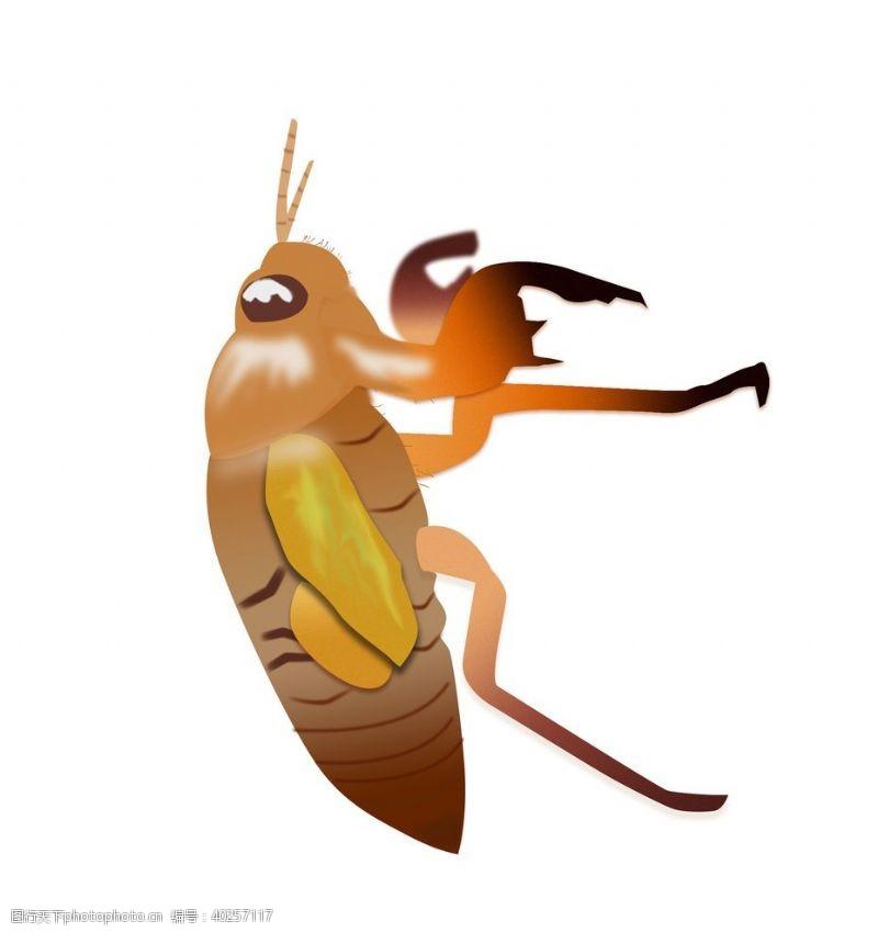 蜗牛知了卡通夏日昆虫元素素材图片