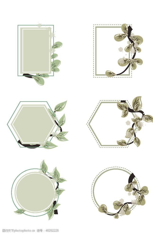 花纹花边植物时子花纹边框图片