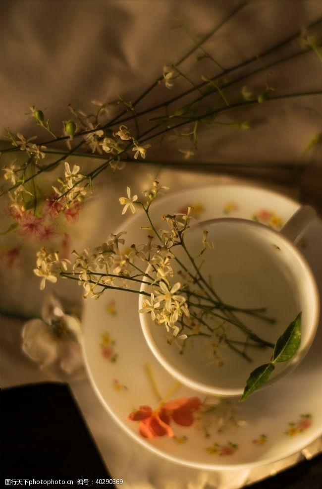 杯子茶饮图片