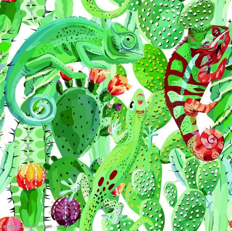 热带植物大牌热带花图片