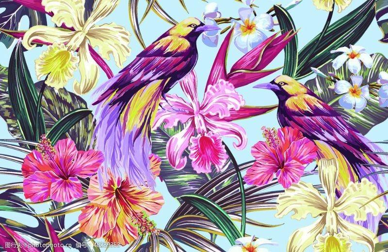 叶子大牌热带花图片