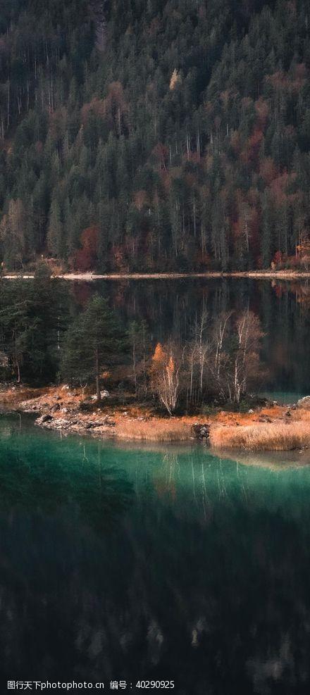 树林海岛风景图片