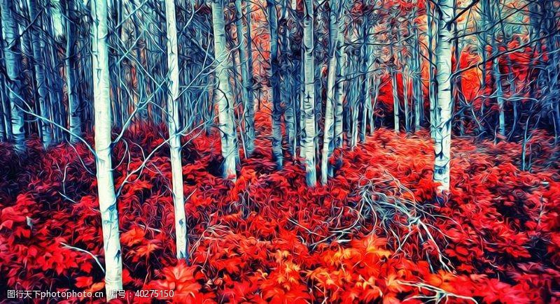 花草树木桦树风景油画图片