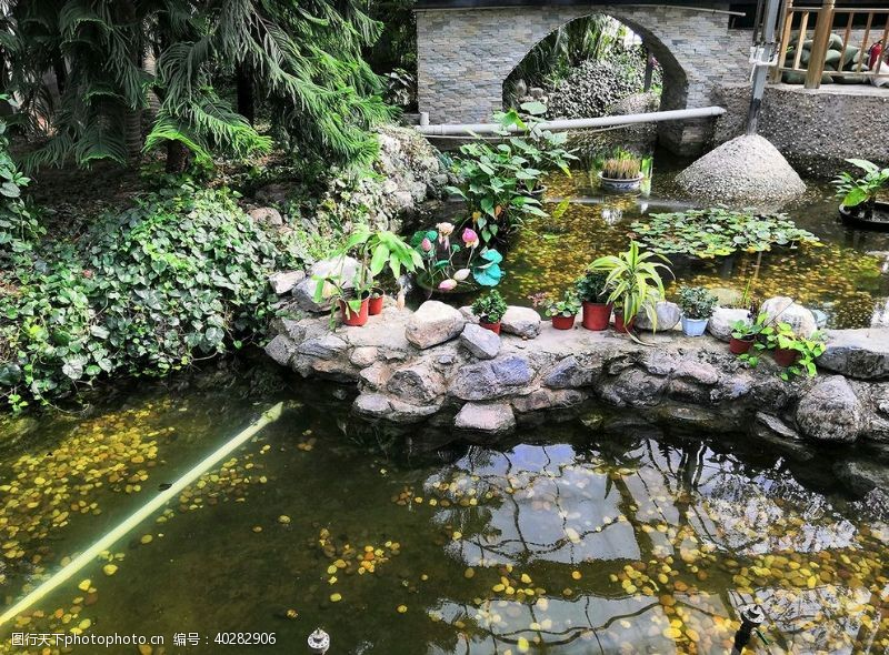 风景名胜金丰农科园图片
