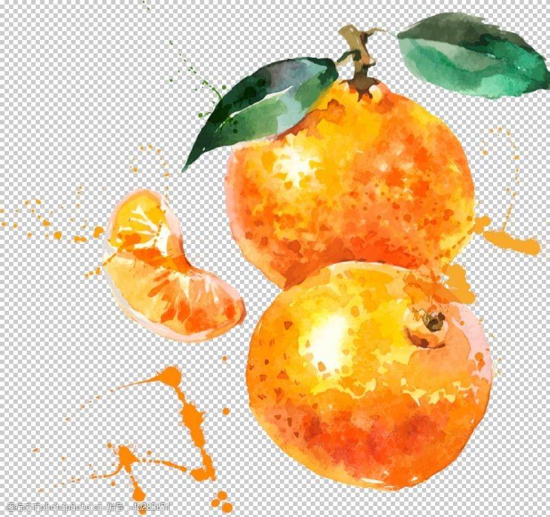 手橘子图片