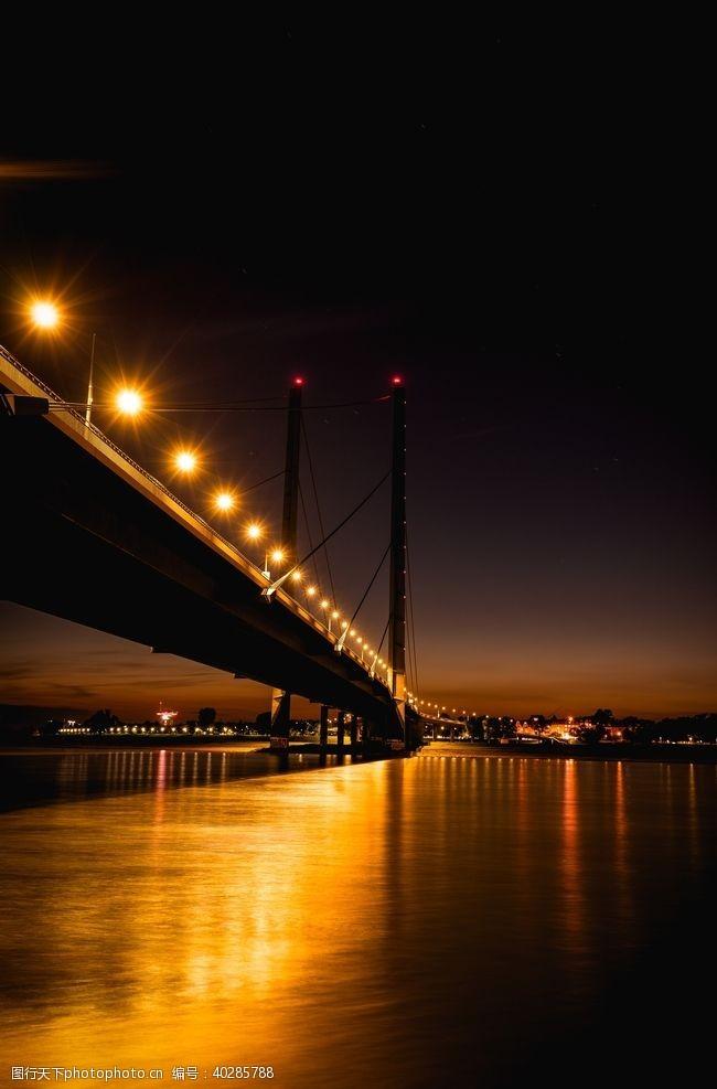 树林桥梁图片