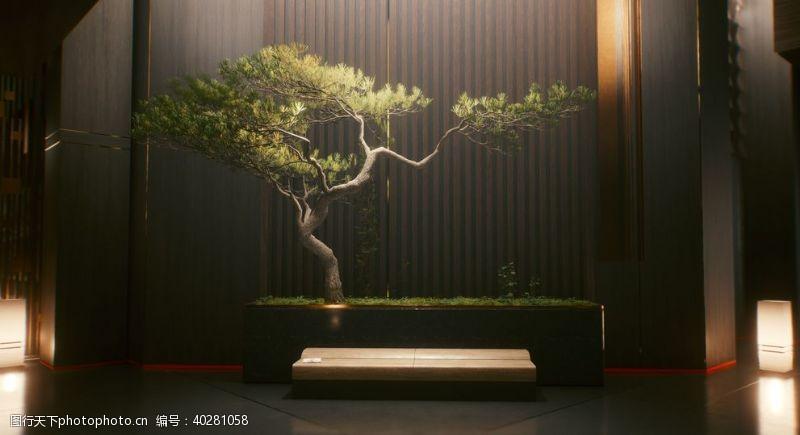 室内装饰盆景松树灯光图片