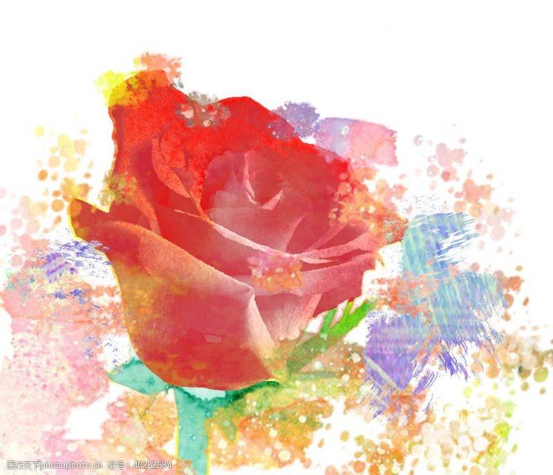 视觉水彩玫瑰图片