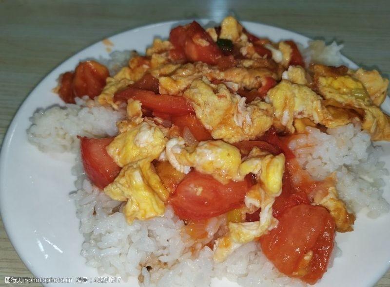 西红柿炒鸡蛋盖饭图片