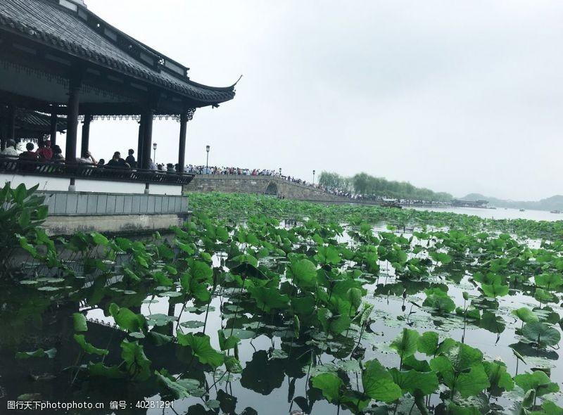 杭州西湖断桥图片