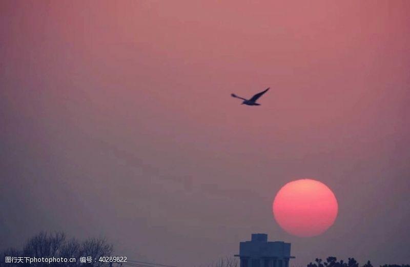 日落夕阳下图片