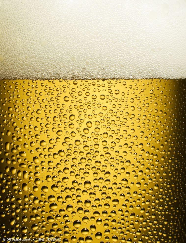 一杯啤酒的特写图片