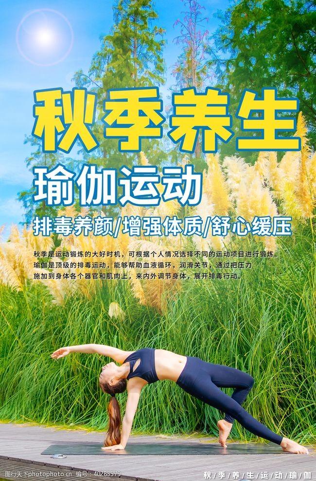 健身瑜伽图片